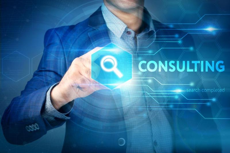 Technology Strategy Consulting