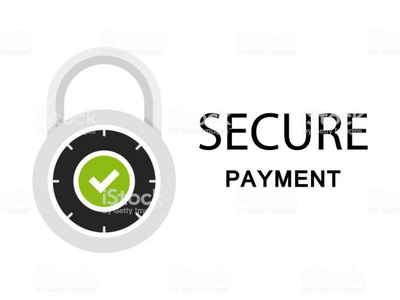 Payment Security Market - Premium Market Insights