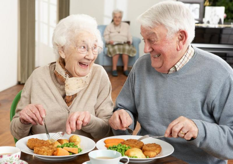 Elderly Nutrition Market