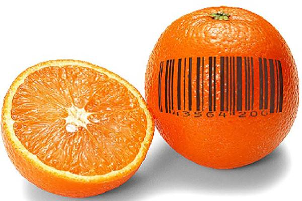 Global Food Traceability Market, Global Food Traceability Market research, Global Food Traceability Analysis, Global Food Traceabi