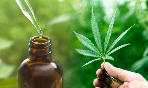 CBD Oil Market Latest Sales Figure Signals More Opportunities Ahead