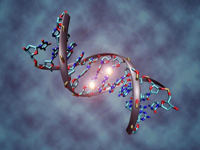 Blockchain in Genomics Market