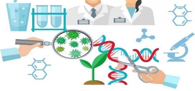 In-vitro Diagnostic Services Market
