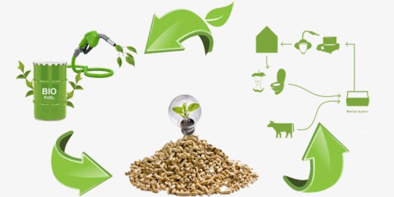 Biomass Fuel Market