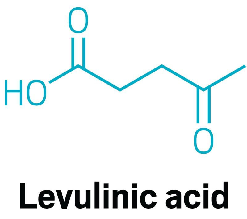What are Factors Expected to Fuel Progress of Levulinic Acid