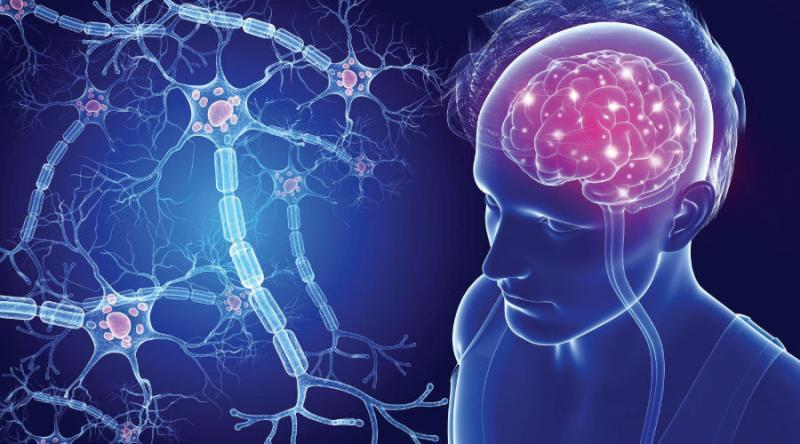 Multiple Sclerosis Market is set to Experience a Revolutionary Growth by 2027