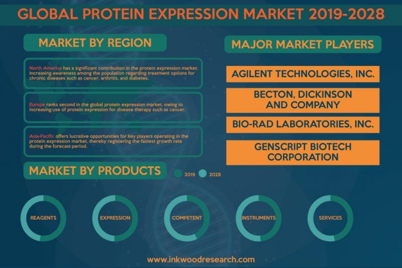 Global Protein Expression Market