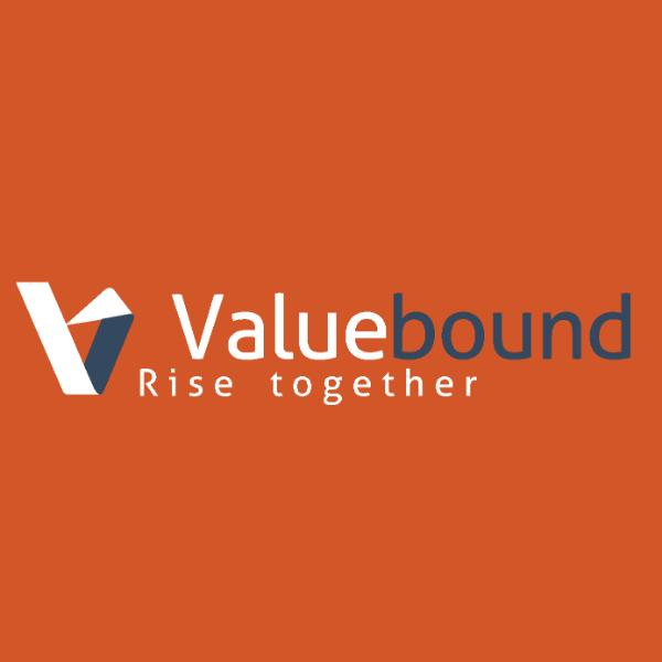 Valuebound Consulting
