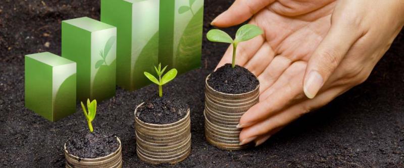 Sustainability In Banking , Sustainability In Banking Market, Sustainability In Banking Market Analysis