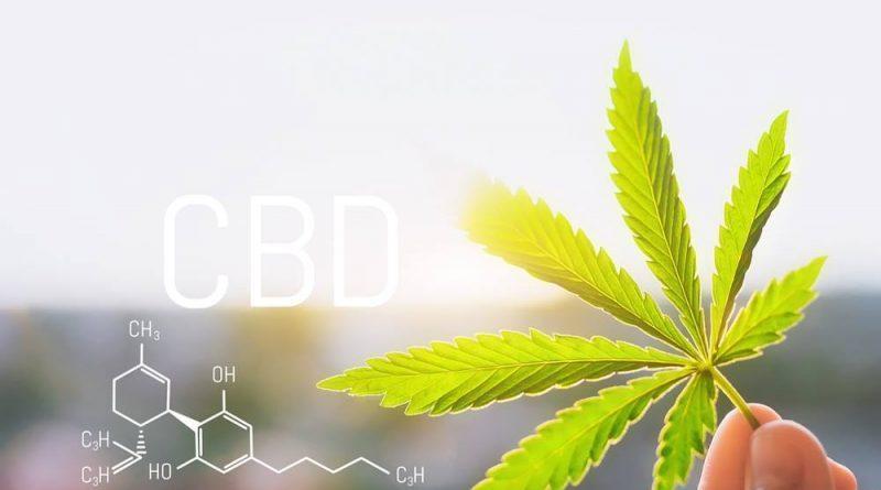 CBD Wellness Products Market