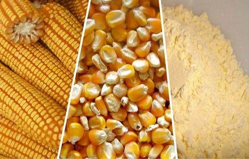 Corn Dry Milling Products