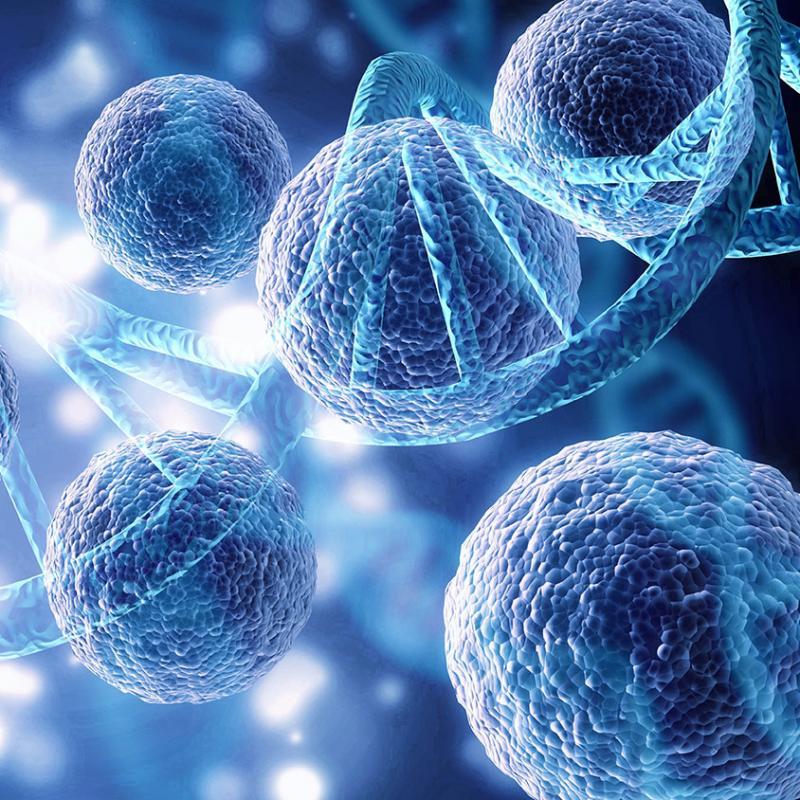 Cellular Health Screening