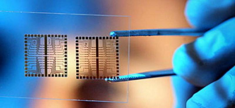 Lab on-Chip and Microarrays Market