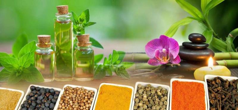 Ayurvedic Health and Personal Care Products market