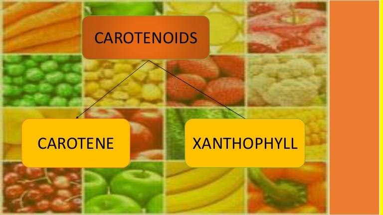 Global Xanthophy and Carotene Market to Witness a Pronounce