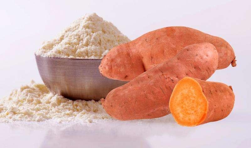 Sweet Potato Flour Market 2020 Latest Trends, Demand