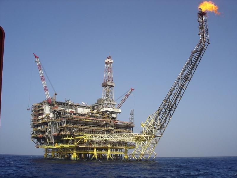 Oil & Gas Downhole Cables Market