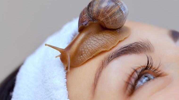 Snail Beauty Products Market