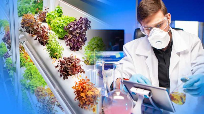 Plant-based Biologics