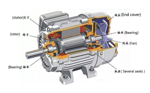 Squirrel-cage Induction Motor Market: Competitive Dynamics &