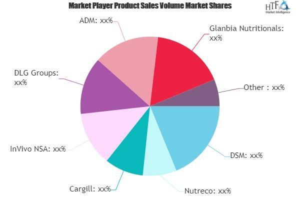Vitamin Premixes Market