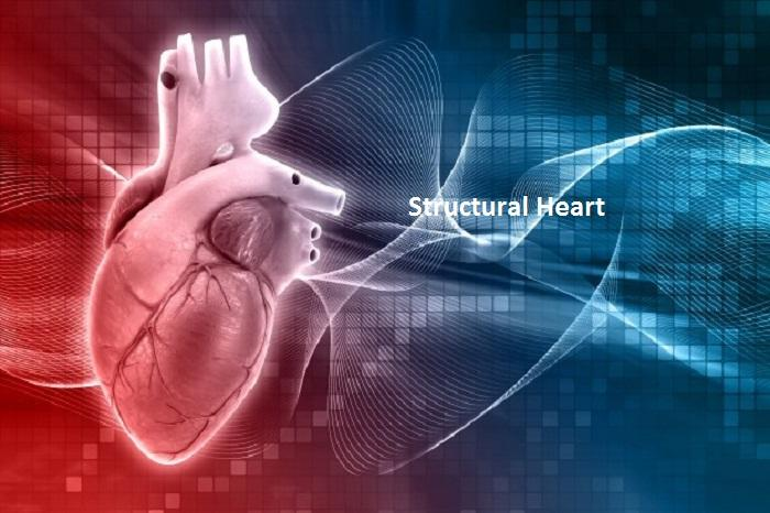 Advancing Innovation In Structural Heart Care - Beyond