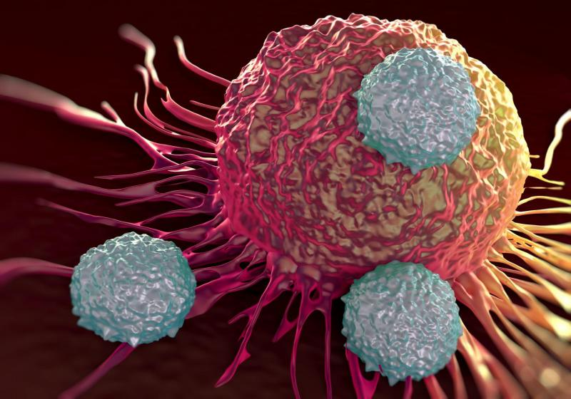 Cancer Monoclonal Antibodies Market