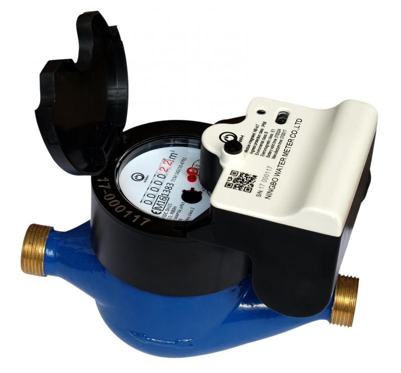 AMI Smart Water Meter Market: Competitive Dynamics & Global