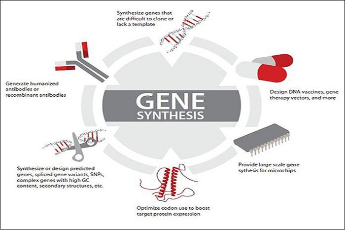 Gene synthesis using DNA Microchip Oligonucleotides - Changing