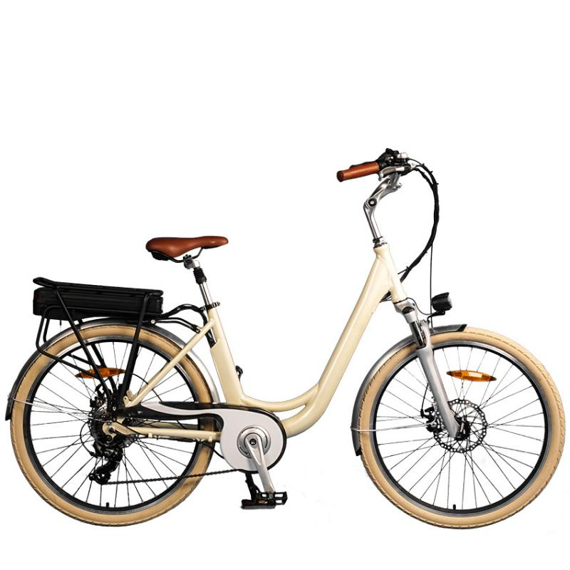 Lithium Battery Electric Bicycle Drive Motor Market to Witness