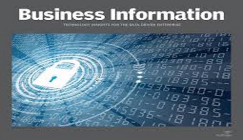 Business Information Market