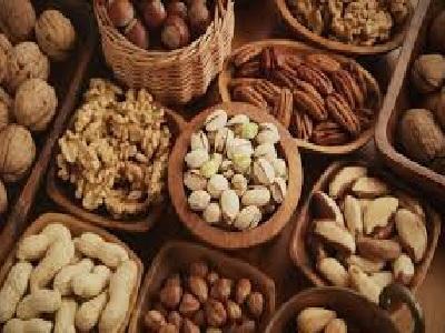 Global Nut Industry Market