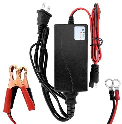 Motorcycle Battery Chargers Market: Competitive Dynamics &