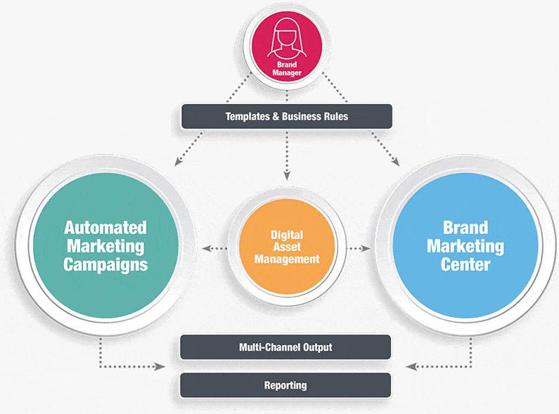 Brand Management Solutions