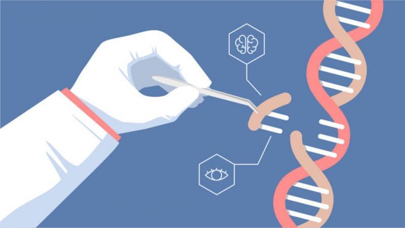 CRISPR And CRISPR-Associated Genes