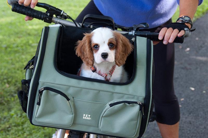 Pet Bike Carrier