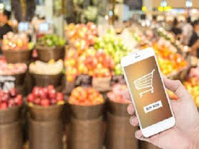 Fresh Food E-commerce Key Market