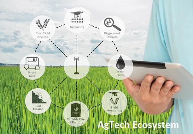 AgTech Ecosystem Market