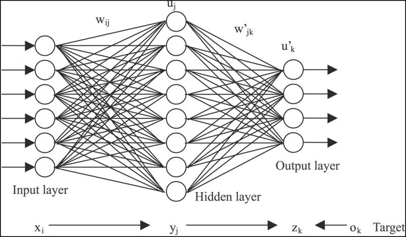 What's driving the Artificial Neural Networks Market