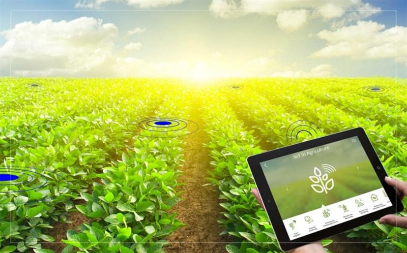 Global Smart Agriculture Solution Market 2020 Growth Analysis -
