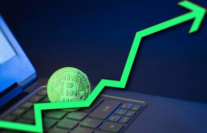 Bitcoin Miner Market