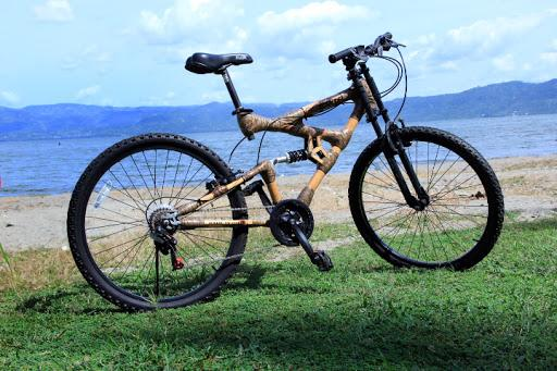 Mountain Bike Suspension Market to Witness Robust Expansion