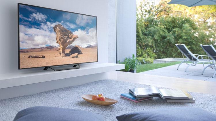 Home Entertainment Devices Worldwide Market - premium market insights
