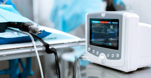 Middle East and Africa Revenue Medical Devices Technologies Woundcare by Countries