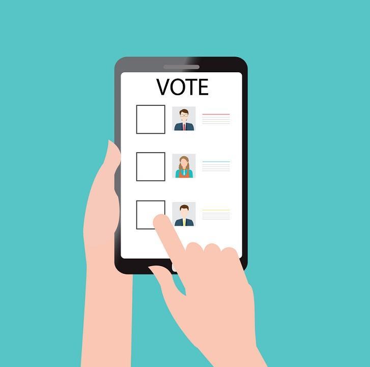 Online Voting Software