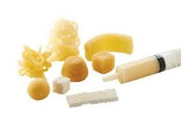Demineralized Bone Matrix