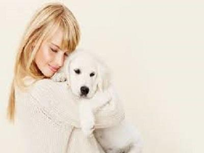 Accident and Illness Pet Insurance Market