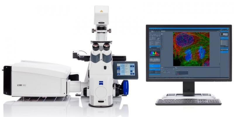 Laser Microscopes Market Size, Share, Development by 2025