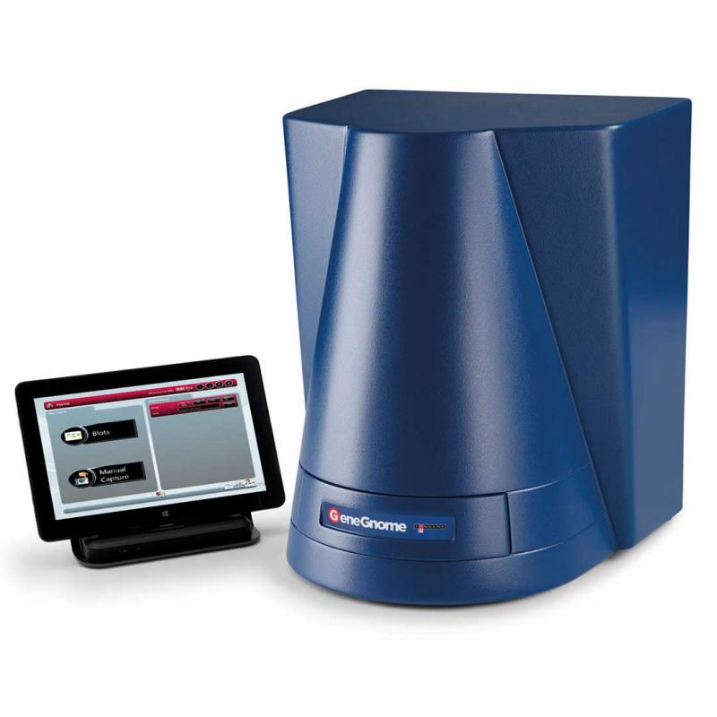 Global Chemiluminescence Imaging Systems Market to Witness