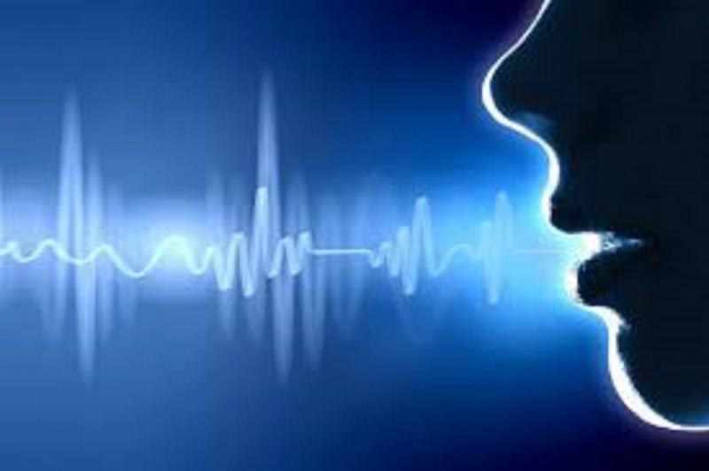 Digital Voice Recorders Market - Premium Market Insights